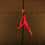 Ruth Salama - Le cirque perdu